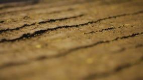 Κομψό χρυσό υφαντικό υλικό σύστασης απόθεμα βίντεο
