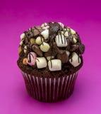 Κομψό Marshmallow Cupcake σοκολάτας Στοκ Εικόνα