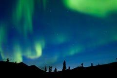 Κομψό taiga Yukon Καναδάς φω'των χορού βόρειο στοκ φωτογραφίες