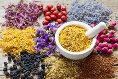 Κονίαμα των ξηρών marigold λουλουδιών και της βοτανικής κατάταξης τσαγιού Στοκ Φωτογραφίες