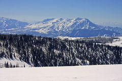 Κονιοποιήστε το βουνό, Utah Στοκ φωτογραφία με δικαίωμα ελεύθερης χρήσης