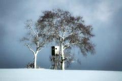 Κονιοποιημένη χιόνι τέχνη σκηνής μοναξιάς τοπίων ήρεμη Στοκ φωτογραφία με δικαίωμα ελεύθερης χρήσης