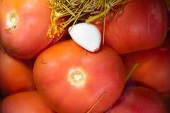 Κονσερβοποιημένες ντομάτες και ένα γαρίφαλο του σκόρδου στο υπόβαθρο στοκ φωτογραφία με δικαίωμα ελεύθερης χρήσης