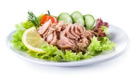 Κονσερβοποιημένος τόνος με τη φυτική σαλάτα στοκ φωτογραφίες