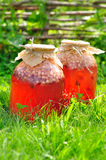 Κονσερβοποιημένο μικτό Compote φρούτων, διάστημα αντιγράφων για το κείμενό σας Στοκ Εικόνες