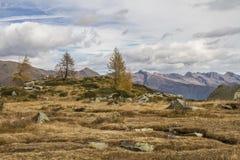 Κοντά σε Lago Aviolo Στοκ φωτογραφίες με δικαίωμα ελεύθερης χρήσης