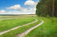 κοντά στο οδικό δάσος Στοκ εικόνες με δικαίωμα ελεύθερης χρήσης