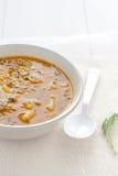 Κοντόχοντρη φυτική σούπα στοκ εικόνα