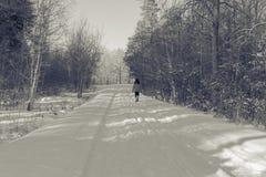 κοντό χειμερινό δάσος υπολοίπου πεζοπορίας μαγικό Στοκ εικόνα με δικαίωμα ελεύθερης χρήσης