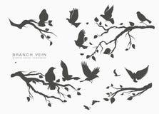 Κοπάδι αριθμού των πετώντας πουλιών στον κλάδο δέντρων στοκ εικόνα με δικαίωμα ελεύθερης χρήσης