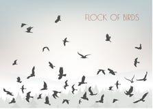 Κοπάδι αριθμών των πετώντας πουλιών στο βουνό στοκ εικόνες με δικαίωμα ελεύθερης χρήσης