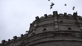 Κοπάδι των πουλιών που πετούν πέρα από τον παλαιό πύργο φιλμ μικρού μήκους