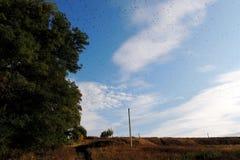Κοπάδι των πουλιών στον ουρανό Στοκ εικόνα με δικαίωμα ελεύθερης χρήσης