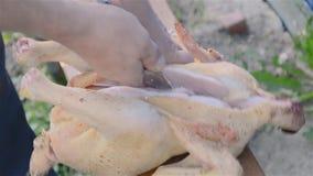 Κοπή κοτόπουλου σχαρών απόθεμα βίντεο