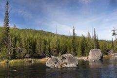 Κοπή ποταμών μέσω του δάσους πεύκων σε Yellowstone NP στοκ φωτογραφίες