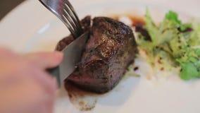 Κοπή του κρέατος σε μια κινηματογράφηση σε πρώτο πλάνο πιάτων απόθεμα βίντεο