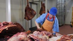 Κοπή χασάπηδων, φρέσκο κρέας επεξεργασίας Meat-processing εγκαταστάσεις Βιομηχανία λουκάνικων πυροβοληθείς meatman με ένα αιχμηρό απόθεμα βίντεο