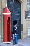 ΚΟΠΕΓΧΑΓΗ, ΔΑΝΙΑ - 15 ΑΥΓΟΎΣΤΟΥ 2016: Δανική βασιλική φρουρά ο ζωής Στοκ Φωτογραφίες