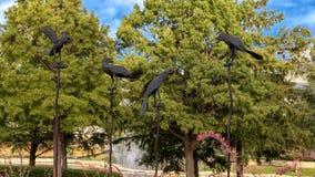 4 κοράκια Nevermore! από το Joe Barrington, Frisco, Τέξας Στοκ εικόνες με δικαίωμα ελεύθερης χρήσης