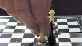 Κοράκι στον κτύπο πέρα από το βασιλιά στο σκάκι απόθεμα βίντεο