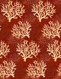 κοράλλι ανασκόπηση που σύρει το floral διάνυσμα χλόης διανυσματική απεικόνιση