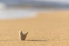 Κοράλλι μορφής καρδιών στην άμμο Στοκ εικόνες με δικαίωμα ελεύθερης χρήσης