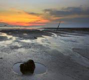 Κοράλλι στην παραλία κατά τη διάρκεια του ηλιοβασιλέματος. Στοκ φωτογραφίες με δικαίωμα ελεύθερης χρήσης