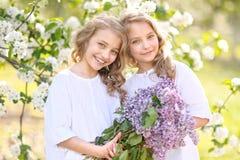 κορίτσια λίγο πορτρέτο δύ&omi Στοκ Φωτογραφία