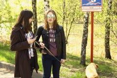 Κορίτσια εφήβων με τα σκυλιά που περπατούν στο πάρκο Στοκ Εικόνα