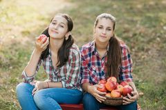 Κορίτσια με τη Apple στον οπωρώνα της Apple Στοκ φωτογραφία με δικαίωμα ελεύθερης χρήσης
