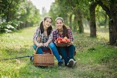 Κορίτσια με τη Apple στον οπωρώνα της Apple Στοκ Εικόνες