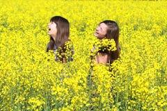 κορίτσια πεδίων Στοκ φωτογραφία με δικαίωμα ελεύθερης χρήσης