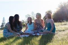 Κορίτσια που κάθονται μαζί στο χλοώδη τομέα με το φως του ήλιου από πάνω Στοκ Φωτογραφία