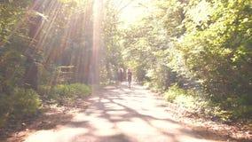 Κορίτσια που οργανώνονται στο δάσος απόθεμα βίντεο