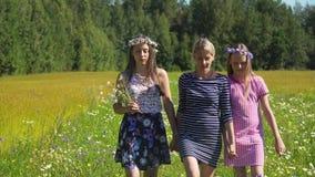 Κορίτσια που περπατούν στον τομέα απόθεμα βίντεο