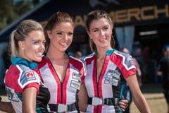 Κορίτσια πλέγματος Στοκ Φωτογραφίες