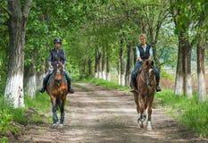 Κορίτσια στην οδήγηση πλατών αλόγου Στοκ Φωτογραφία