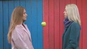 Κορίτσια στο ζωηρόχρωμο ξύλινο υπόβαθρο eco απόθεμα βίντεο