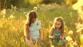 Κορίτσια στο θερινό λιβάδι φιλμ μικρού μήκους