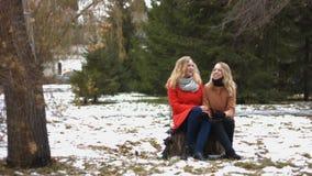Κορίτσια στο χιονώδες πάρκο απόθεμα βίντεο