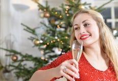 Κορίτσι Δεκεμβρίου στοκ εικόνα με δικαίωμα ελεύθερης χρήσης