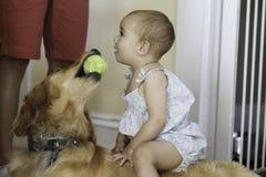 Κορίτσι ενός έτους βρεφών και το αγαπημένο σκυλί της Στοκ Φωτογραφία