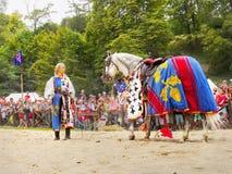 Κορίτσι και άλογο, μεσαιωνικό φεστιβάλ ιπποτών Στοκ εικόνα με δικαίωμα ελεύθερης χρήσης