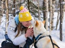 Κορίτσι και γεροδεμένο σκυλί στο Lapland Φινλανδία στοκ φωτογραφία με δικαίωμα ελεύθερης χρήσης