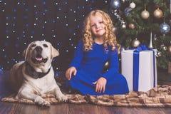 Κορίτσι και λευκό σκυλί του Λαμπραντόρ, έννοια Χριστουγέννων Στοκ Εικόνες