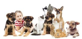 Κορίτσι και ζώα καθορισμένα Στοκ φωτογραφίες με δικαίωμα ελεύθερης χρήσης