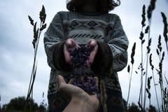 Κορίτσι και λουλούδια Στοκ Φωτογραφίες