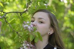 Κορίτσι και πασχαλιά Στοκ εικόνες με δικαίωμα ελεύθερης χρήσης