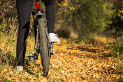 Κορίτσι και ποδήλατο Στοκ Εικόνα