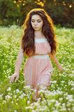 Κορίτσι και τομέας των λουλουδιών Στοκ Εικόνα
